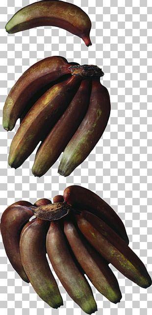 Cooking Banana Hardy Banana Red Banana Musa × Paradisiaca PNG