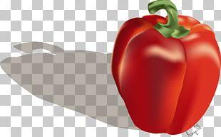 Piquillo Pepper Tabasco Pepper Cayenne Pepper Bell Pepper Malagueta Pepper PNG