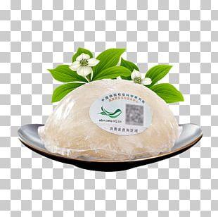 White Bird's Nest PNG