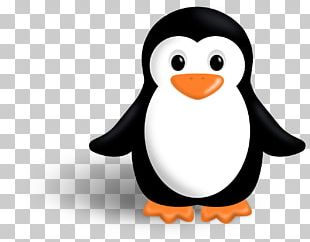 King Penguin Free Content PNG
