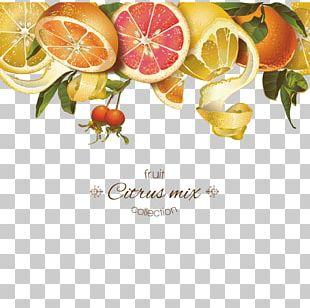 Juice Lemon Grapefruit Tangerine PNG