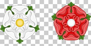 Wars Of The Roses White Rose Of York Red Rose Of Lancaster House Of York PNG