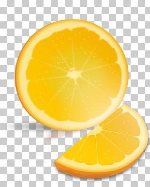 Orange Juice Valencia Orange Lemon Grapefruit PNG