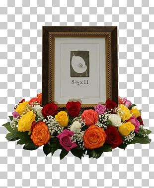 Rose Frames Floral Design Cut Flowers PNG