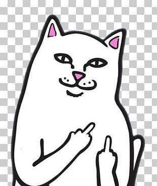 Internet Troll Cat Trollface Desktop PNG