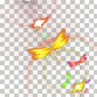 Yellow Petal Close-up Pattern PNG