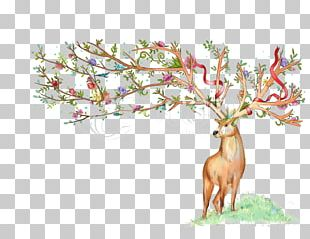 Deer Watercolor Painting PNG