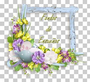 Floral Design Description Dream Cut Flowers PNG