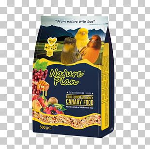 Budgerigar Bird Food Fodder Atlantic Canary PNG