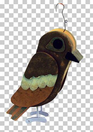 Barn Owl Bird Nest Box Beak PNG