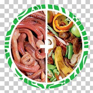 Thuringian Sausage Vermicompost Bratwurst Humus Breakfast Sausage PNG