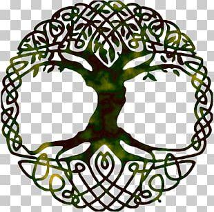 Tree Of Life Yggdrasil World Tree Symbol PNG