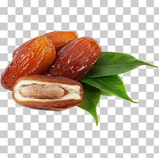 Date Palm PNG