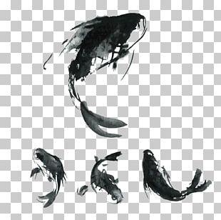 Koi Carassius Auratus Chinese Cuisine Carp Fishing PNG