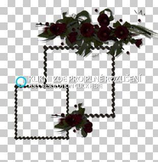 Flowering Plant Tree PNG