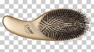 Hairbrush Bristle Wild Boar PNG