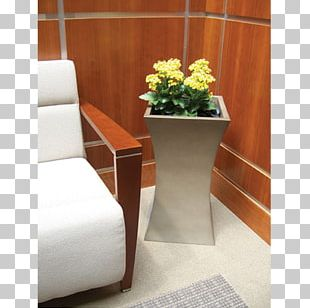 Houseplant Office Room Interior Design Services PNG