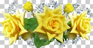 Portable Network Graphics Flower Designs Yellow PNG