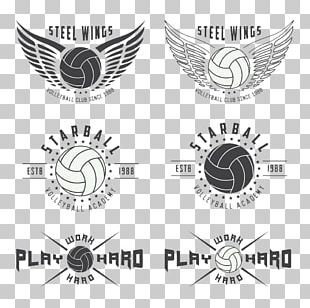 Volleyball Logo Illustration PNG