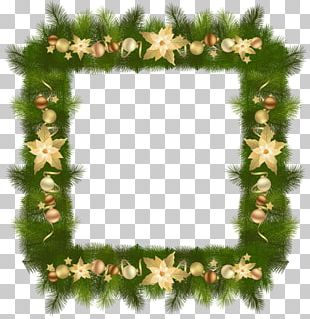 Christmas Tree Frames PNG