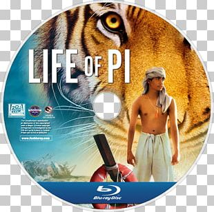Life Of Pi 1080p Desktop 4K Resolution PNG