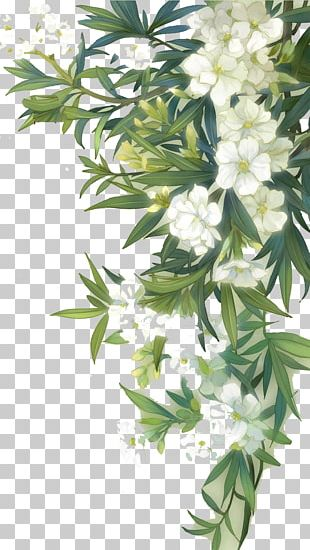 Familiar Wild Flowers Watercolour Flowers PNG