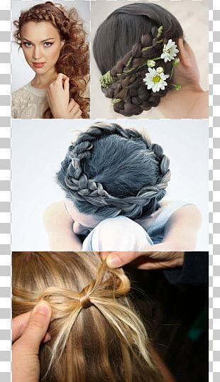 Long Hair Bun Romance Film Hair Tie Hairstyle PNG