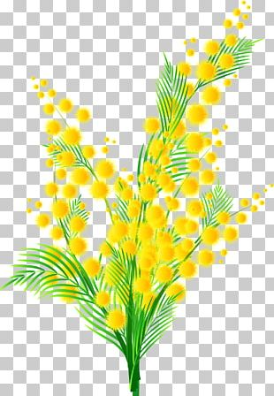 Sensitive Plant Cloth Napkins Flower PNG