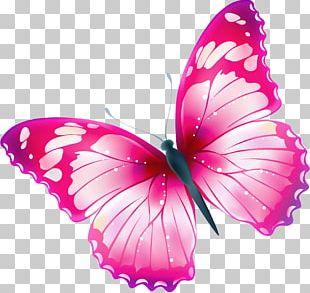 Butterfly Free Greta Oto PNG