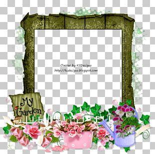 Floral Design Frames Flower Petal PNG
