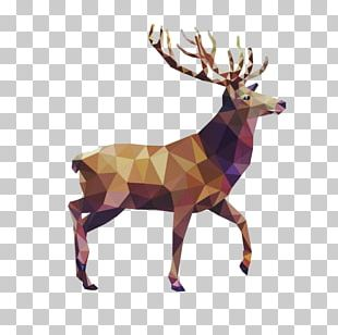 Deer Geometry Drawing Art PNG