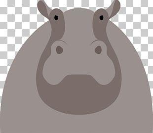 Hippopotamus Cartoon Illustration PNG