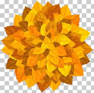 Round Decoration With Autumn Leaves PNG