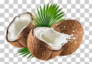 Coconut Milk Coconut Water Nata De Coco Coconut Oil PNG