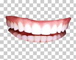 Human Tooth PNG