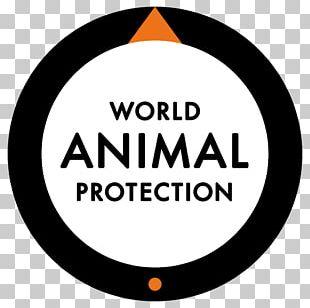 World Animal Protection Canada Animal Welfare Cruelty To Animals PNG