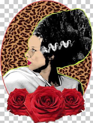 Bride Of Frankenstein Elsa Lanchester Art PNG