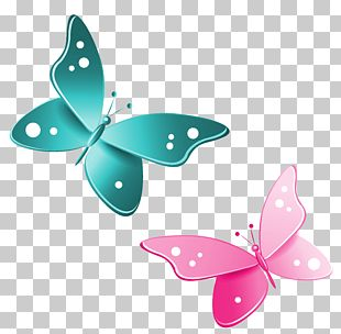 Butterfly Pink PNG