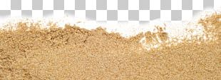 Reading Straw Grasses Cereal PNG