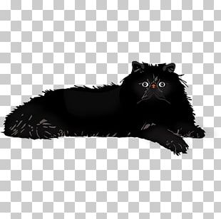 Whiskers Cat Dog Fur Canidae PNG