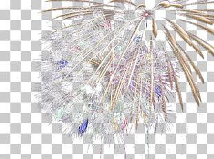 Fireworks Illustration PNG