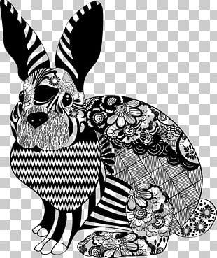Domestic Rabbit Easter Bunny Lionhead Rabbit Netherland Dwarf Rabbit PNG