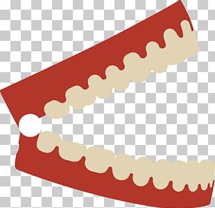 Human Tooth Dentist PNG