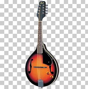 Mandolin Musical Instruments Eight-string Guitar String Instruments PNG