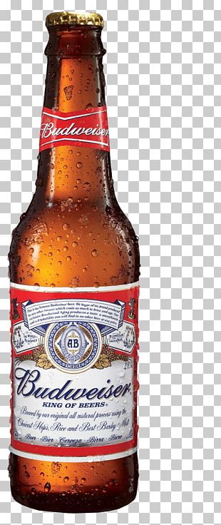 Budweiser Beer Anheuser-Busch Lager United States PNG