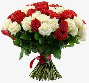 White Rose And Red Rose Bouquet PNG