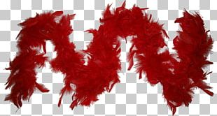 Feather Boa PhotoScape GIMP PNG