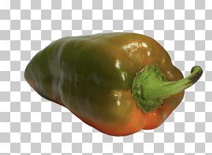 Bell Pepper Serrano Pepper Poblano Italian Cuisine Chili Pepper PNG