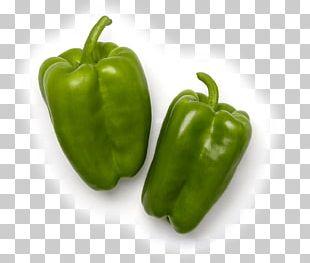 Habanero Jalapeño Serrano Pepper Cayenne Pepper Bell Pepper PNG