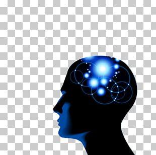 Mind Brain Homo Sapiens Subconscious Thought PNG